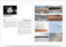 Screen Shot 2020-02-27 at 12.20.46 PM.pn