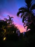 sunsetperm.jpg