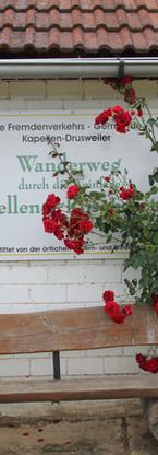 "Ruhebank am ""Rosengarten-Wanderweg II"""