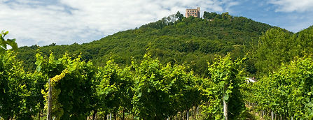 Pfalz.jpg
