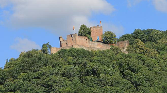 Burg Landeck in der Südpfalz - No. 31 im Rosengarten