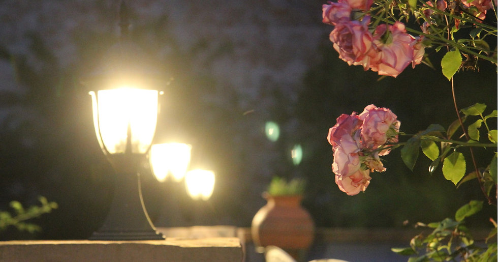 Romantik im No. 31 im Rosengarten in Kapellen-Drusweiler
