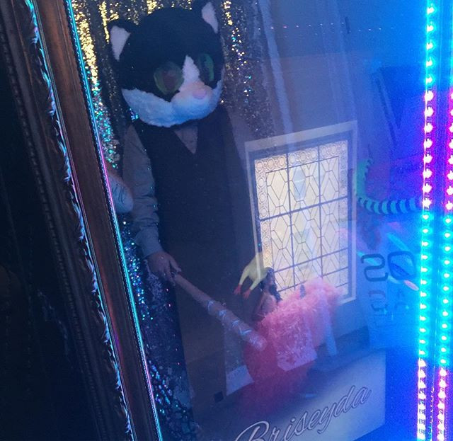 Cat! #photobooth #mirrorbooth