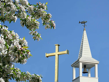 Church Grounds 1b.jpg