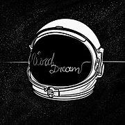 VIVID DREAM - DUST IN SPACE.jpg