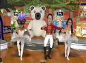 DANCING HEADS/  MUSIC VIDEOS