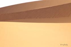 Libia 1299