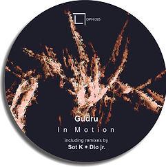 DPH 095 Gudru - In Motion _ cover.jpg