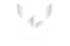 businessoptix_butterfly_full_logo_NEW_PN
