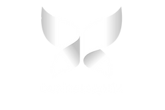 businessoptix_butterfly_full_logo_NEW_PN