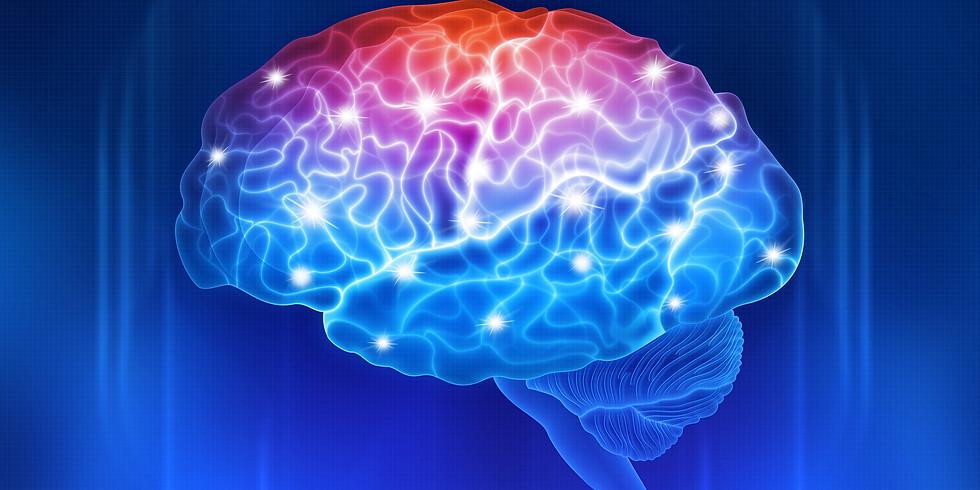 NextGen Brain Fitness Leadership Meeting