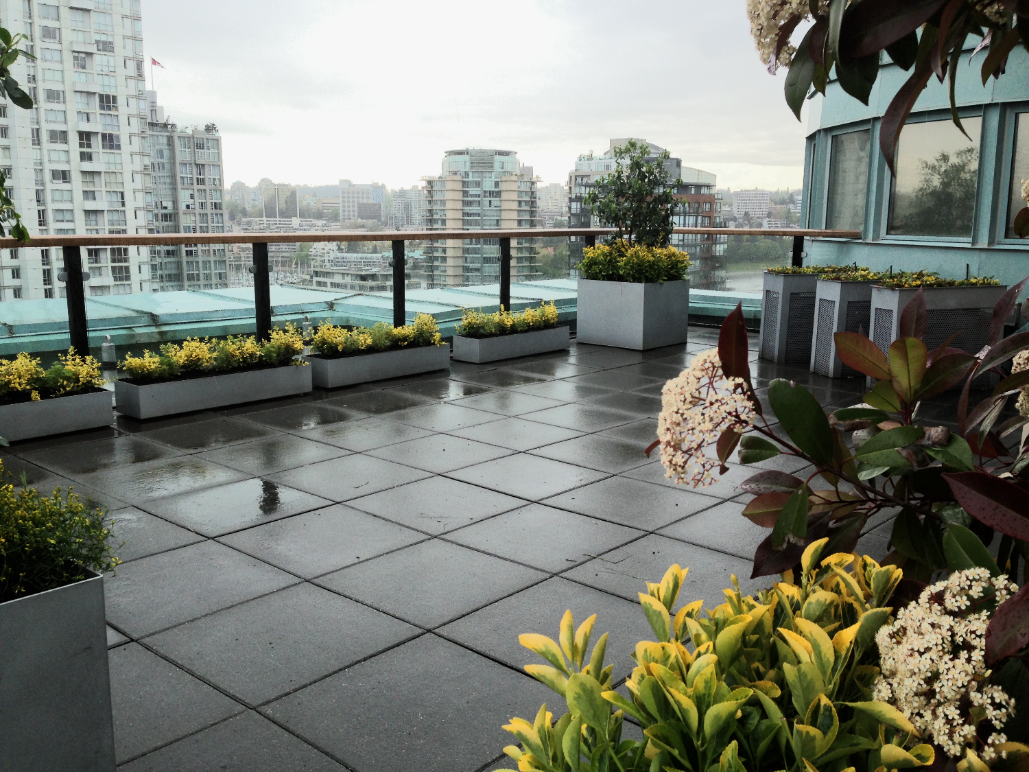Penthouse and Condo Garden Spaces