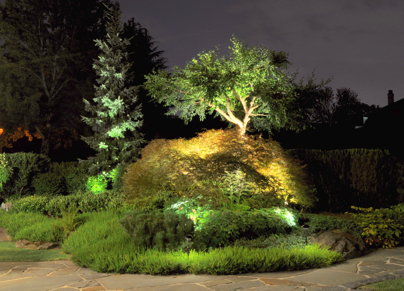 Garden Lighting and Irrigation