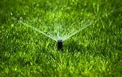 Garden Lighting and Irrigation