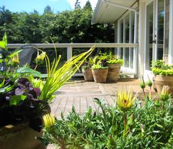 Penthouse and Condo Garden Spaces