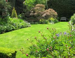 Professional Garden Maintenance
