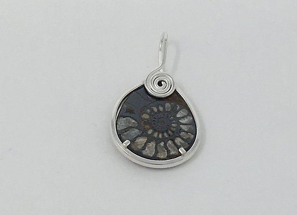 Ammonite Pendant with coils