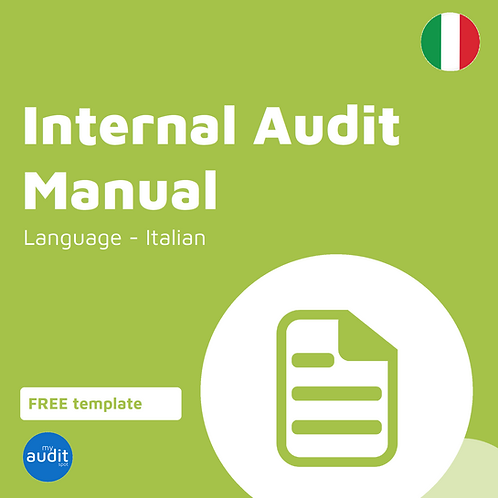 AFM4 - Internal Audit Manual - Italian