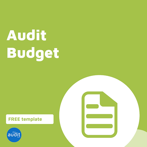 B7 - Audit Budget