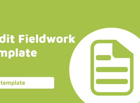 Fieldwork - Testing Workpaper Template
