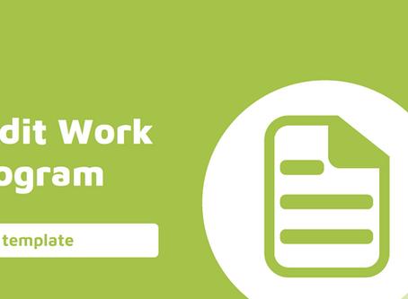 Audit Planning - Internal Audit Work Program