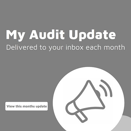 My Audit Update - Mob Web IN.png
