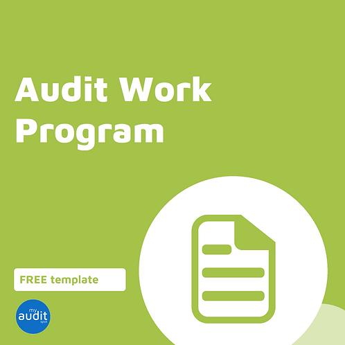 B8 - Audit Work Program