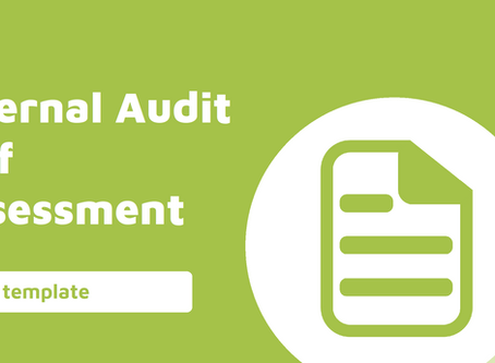 Internal Audit Self Assessment Checklist