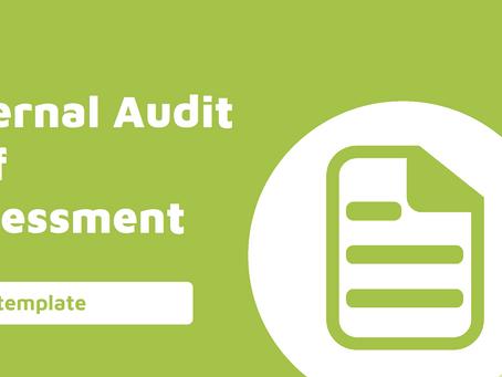 Internal Audit Self Assessment Checklist