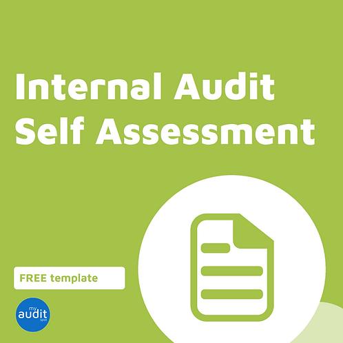 AFM12 - Internal Audit Self Assessment