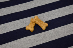 A yummy treat to welcome your pet to their suite