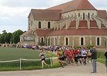 Chablis - marathon, semi-marathon, trail 13 km, rando 16 et 11 km