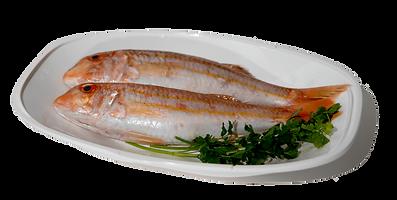 Vissen.png