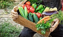 farmer-holding-csa-box-850x500.jpg