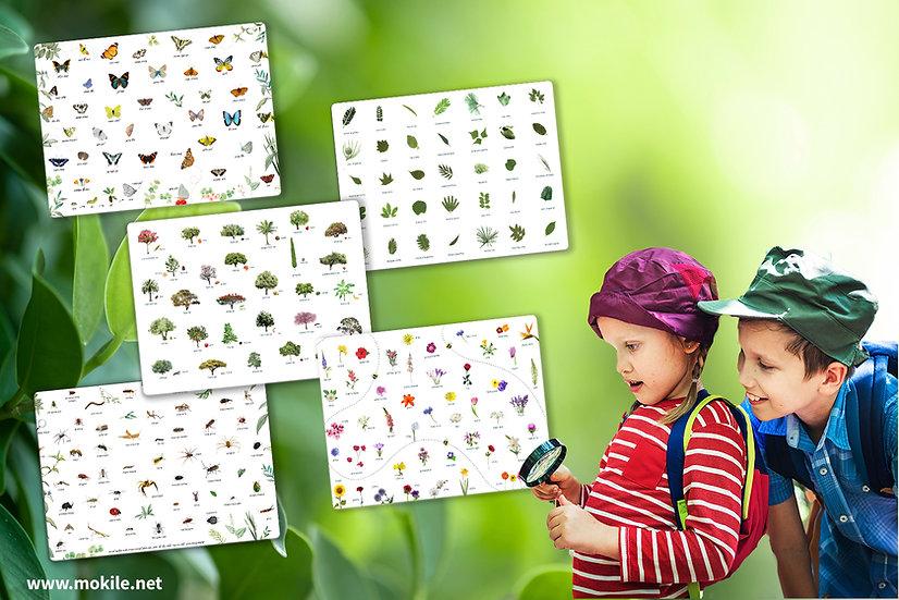 5 פלייסמטים מעוצבים של הטבע בנושא פרחים חרקים עצים עלים ופרפרים