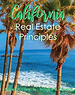 Principles Cover Thumbnail.png