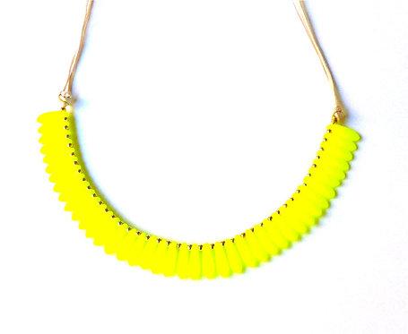 The Yellow Pepitas
