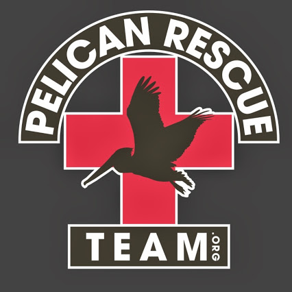PELICAN_RESCUE_TEAM