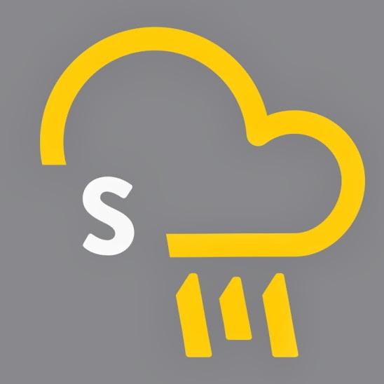 Storm_media_emblema_grey_CMYK