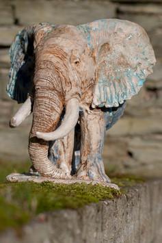 last of big tusker elephants