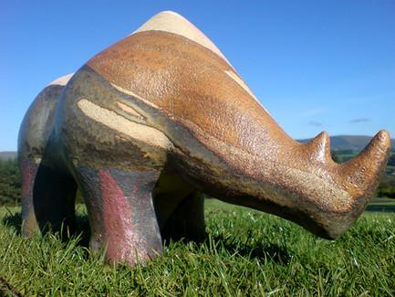 Landscape Rhino