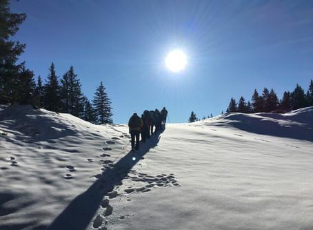 2021-01-09 Schneeschuhlaufen mit Tobias