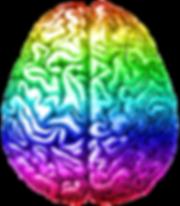 Rainbow_brain,_Aug_2014.png