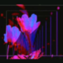 Live _ ♤ Euforisk Vårfest ♤ 1´19 .png