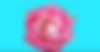 Skjermbilde 2019-06-12 kl. 01.49.46.png
