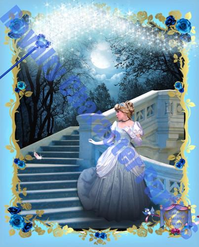 Cinderella Tall Frame.jpg