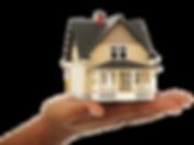 kisspng-real-estate-wordpress-credit-bus