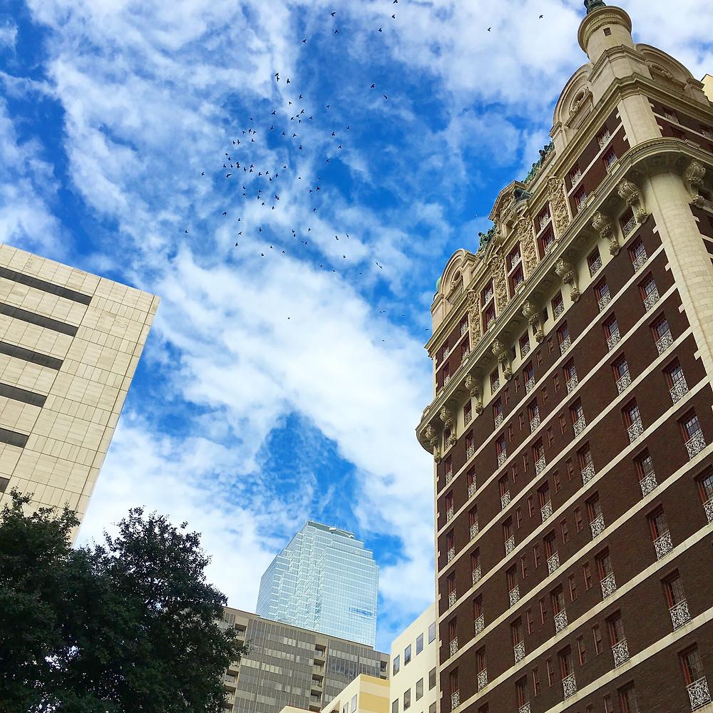 The Adolphus Hotel | Hello_Francois | Dallas Men's Fashion & Lifestyle Blogger