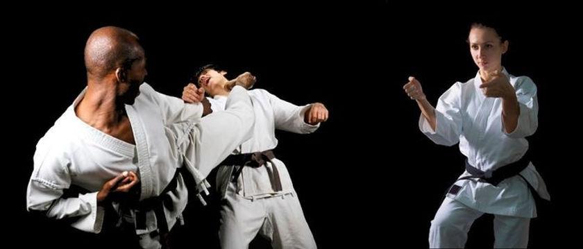 karateka-ss-1170x500.jpg
