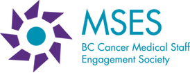 mses-logo.png